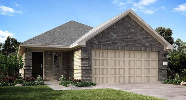 19010 Cicerone Court, New Caney, TX 77357 (MLS #6008118) :: The Jill Smith Team
