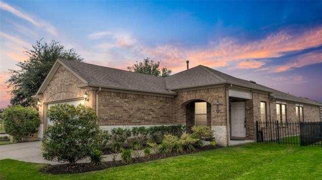 2954 Cone Flower Drive, Richmond, TX 77469 (MLS #60082428) :: JL Realty Team at Coldwell Banker, United