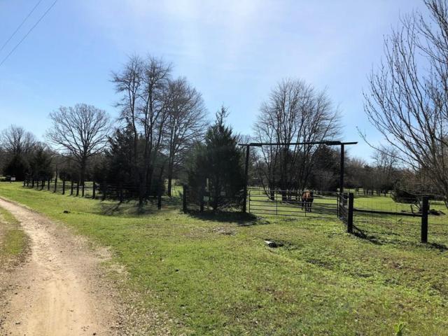 12140 County Road 2481, Oakwood, TX 75855 (MLS #60111555) :: Fairwater Westmont Real Estate