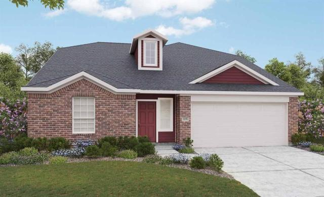 227 Sintra Lake Way, Rosenberg, TX 77469 (MLS #60179345) :: Texas Home Shop Realty
