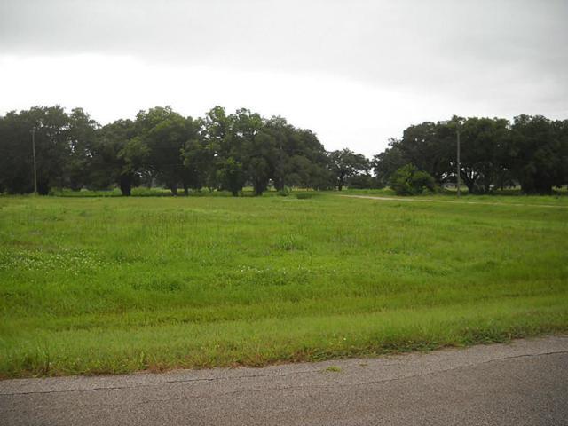 339 Hunter Court, Rosharon, TX 77583 (MLS #6018353) :: The Queen Team