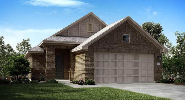 22525 Gran Sasso Drive, New Caney, TX 77357 (MLS #60186207) :: The Home Branch