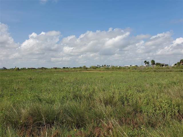 349 Mariposa Street, Sargent, TX 77414 (MLS #60323059) :: The SOLD by George Team