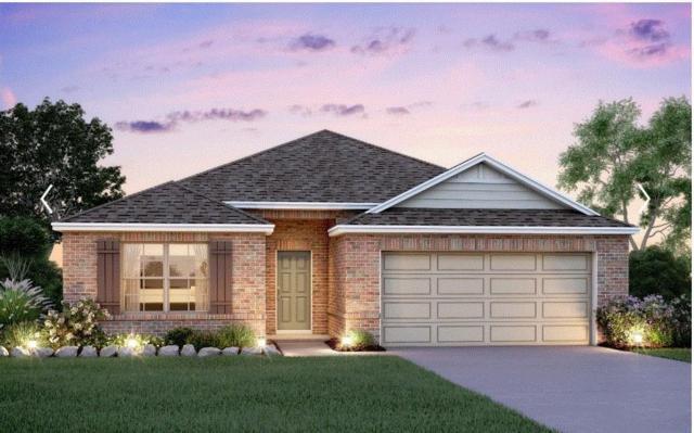 6919 Larkspur Terrace Lane, Katy, TX 77449 (MLS #60423724) :: The SOLD by George Team