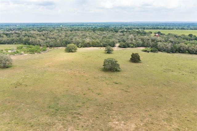 10 Armstrong Derry Road, Flatonia, TX 78941 (MLS #60428464) :: Connect Realty