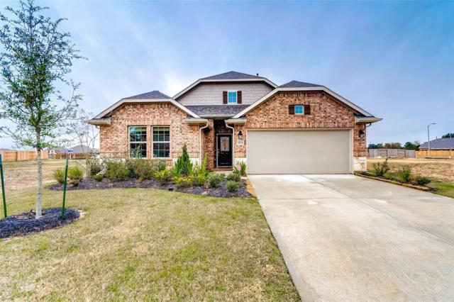 19215 Red Cascade Court, Tomball, TX 77377 (MLS #60444832) :: Magnolia Realty