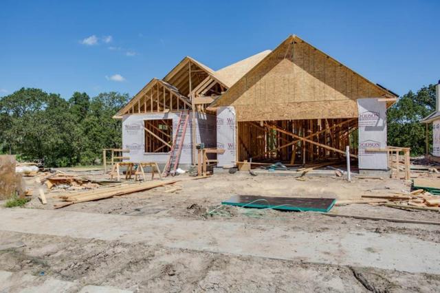 4011 Eskew Drive, College Station, TX 77845 (MLS #60467478) :: Krueger Real Estate