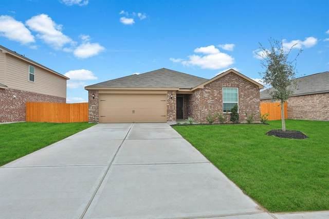 1127 Rare Fancy Drive, Iowa Colony, TX 77583 (MLS #60486655) :: The Freund Group