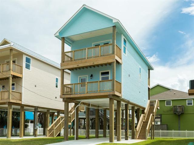 11227 Schwartz Drive, Galveston, TX 77554 (MLS #60550546) :: Texas Home Shop Realty