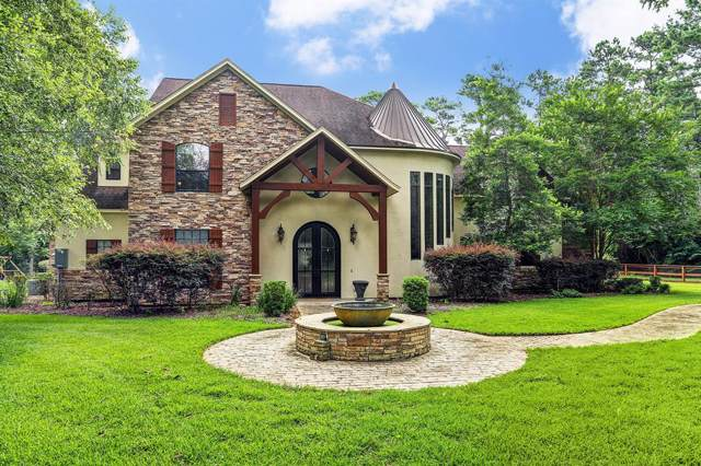 23010 Petrich Lane, Tomball, TX 77377 (MLS #60572639) :: Caskey Realty