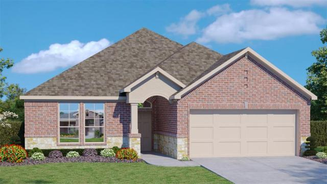 7418 Mango Orchard Lane, Conroe, TX 77304 (MLS #60630105) :: The Collective Realty Group