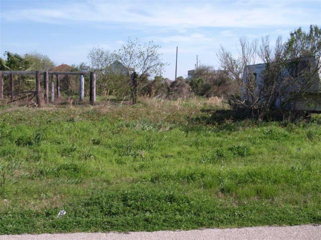 1402 Anderson Avenue, Port Bolivar, TX 77650 (MLS #60644622) :: Texas Home Shop Realty