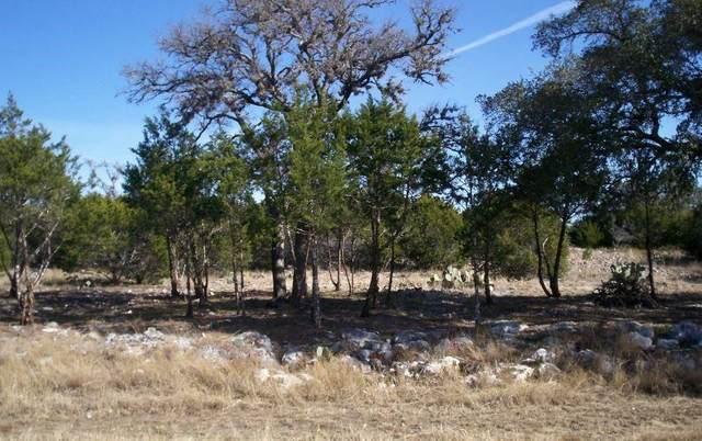 361 Warbler Drive W, Spring Branch, TX 78070 (MLS #60713889) :: Parodi Group Real Estate