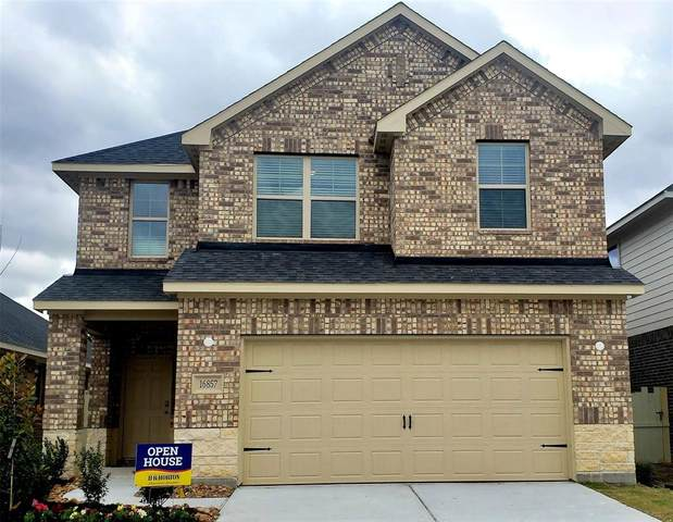16857 Pink Wintergreen Drive, Conroe, TX 77385 (MLS #60723658) :: The Home Branch