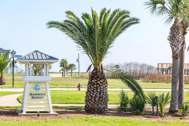 25623 Spotted Sandpiper Drive, Galveston, TX 77554 (MLS #60756483) :: Team Parodi at Realty Associates