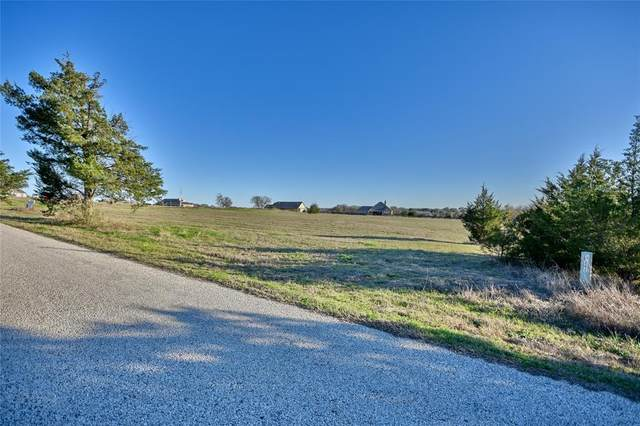 202 Fritz Road, Brenham, TX 77833 (MLS #60908605) :: The Sansone Group