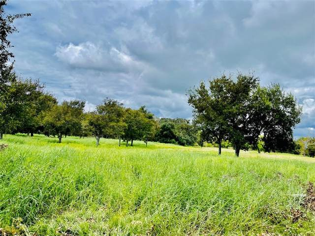 0 Private Road 652 Live Oak Bnd Drive, Sargent, TX 77414 (MLS #60971964) :: Connect Realty