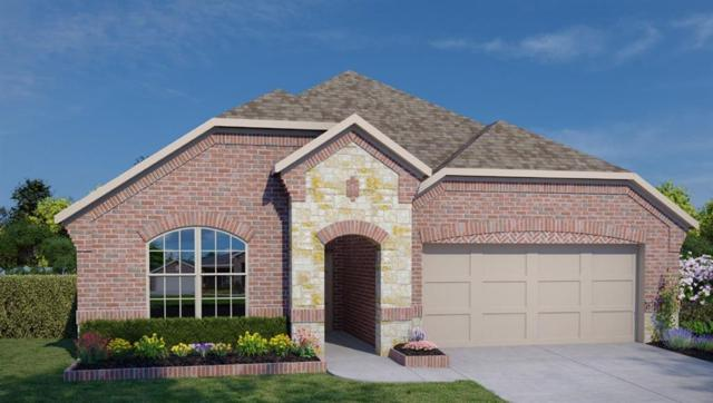 8522 Green Paseo Place, Rosenberg, TX 77469 (MLS #60998803) :: The Bly Team