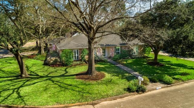 13314 Dorchester Forest Drive, Houston, TX 77070 (MLS #61008394) :: Texas Home Shop Realty