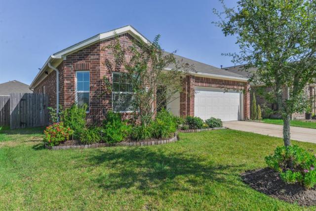 10815 Clear Arbor Lane, Houston, TX 77034 (MLS #61131831) :: Caskey Realty