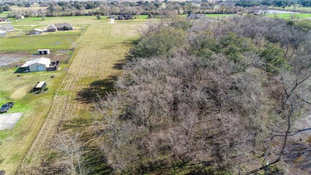17839 Indian Forest Drive, Rosharon, TX 77583 (MLS #61137530) :: Texas Home Shop Realty