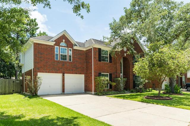 16202 Leigh Canyon Drive, Friendswood, TX 77546 (MLS #61164404) :: Texas Home Shop Realty