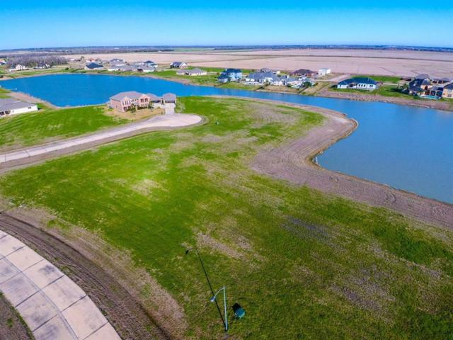 3819 S Shore Drive, Rosharon, TX 77583 (MLS #61172027) :: Texas Home Shop Realty