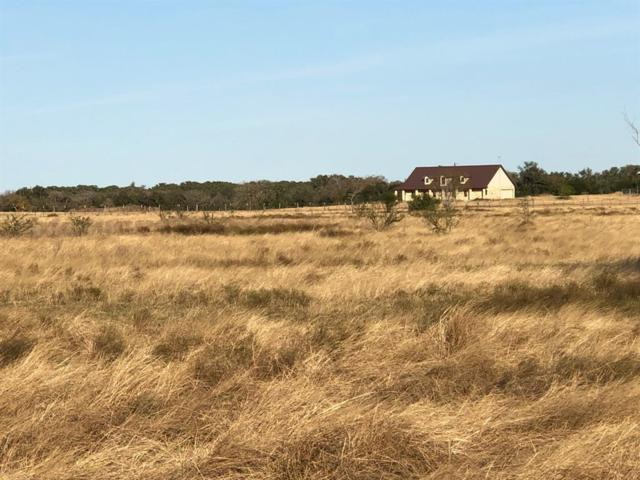 849 Rutherford Ln Lane, Goliad, TX 77963 (MLS #61182645) :: The SOLD by George Team