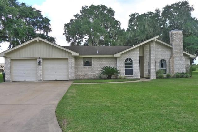 253 Edgewater Drive, West Columbia, TX 77486 (MLS #61208717) :: The SOLD by George Team