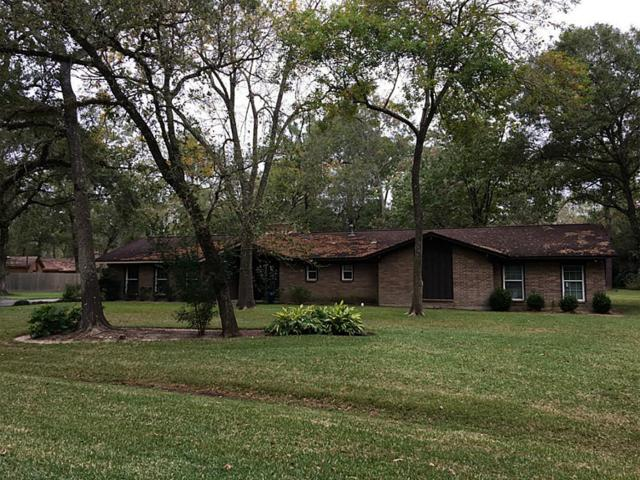 1207 Rosewood Drive #0, Dickinson, TX 77539 (MLS #61224104) :: Texas Home Shop Realty