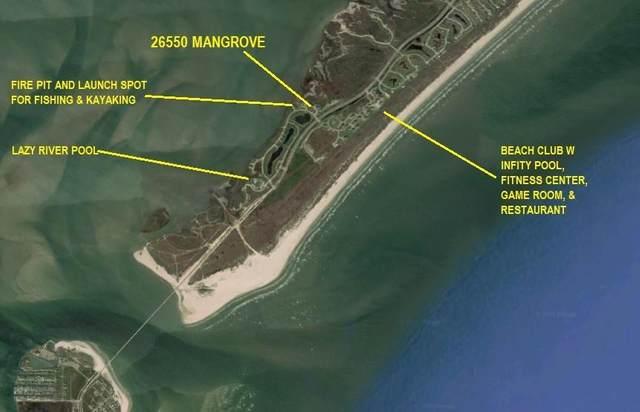 26550 Mangrove Drive #203, Galveston, TX 77554 (MLS #61272499) :: Connect Realty