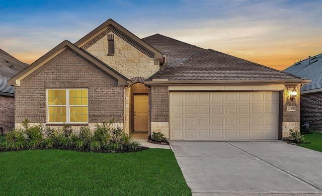 22303 Log Orchard Lane, Porter, TX 77365 (MLS #61355723) :: Caskey Realty