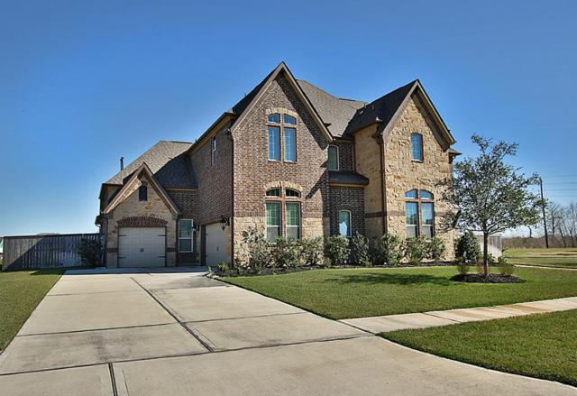 4329 Buffalo Berry Lane, Manvel, TX 77578 (MLS #61415732) :: The Sansone Group