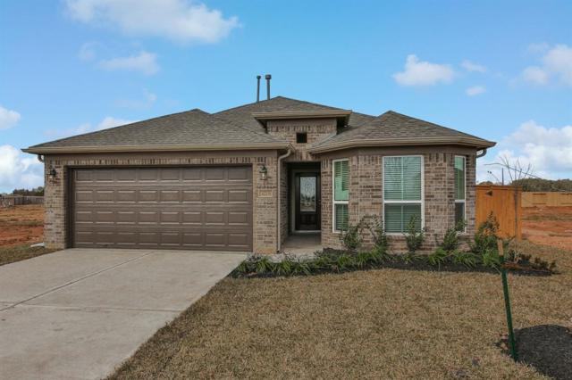32706 Timber Point Drive, Fulshear, TX 77423 (MLS #61431301) :: The Heyl Group at Keller Williams