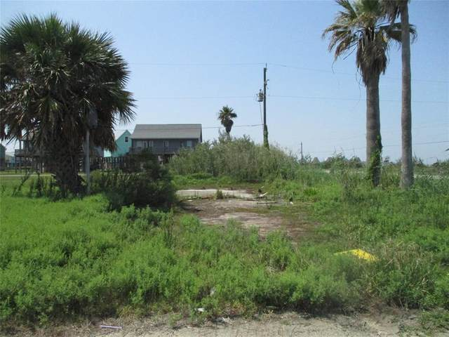127 Nesmith Place, Surfside Beach, TX 77541 (MLS #61455521) :: Green Residential