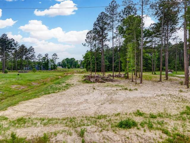 195 County Road 5021, Cleveland, TX 77327 (MLS #61490698) :: Michele Harmon Team