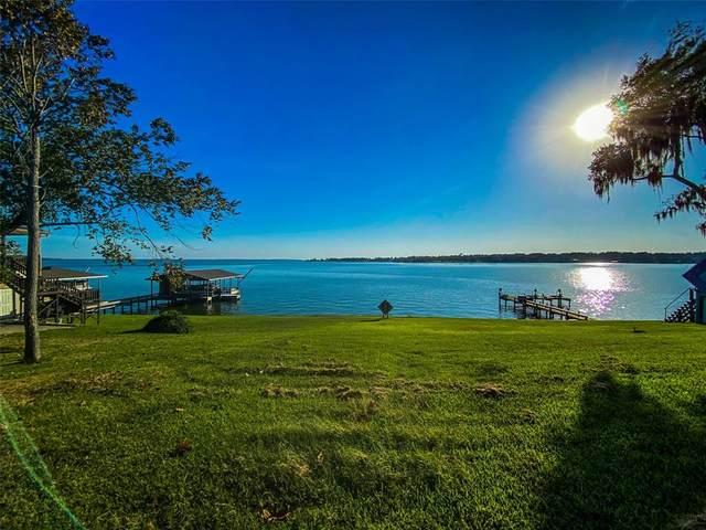 600 Dove Island, Livingston, TX 77351 (MLS #61508317) :: Michele Harmon Team