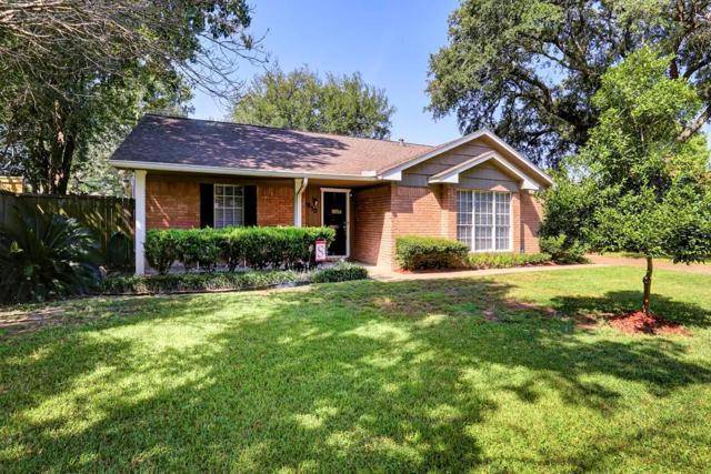 8810 Cadawac, Houston, TX 77074 (MLS #61560207) :: Krueger Real Estate