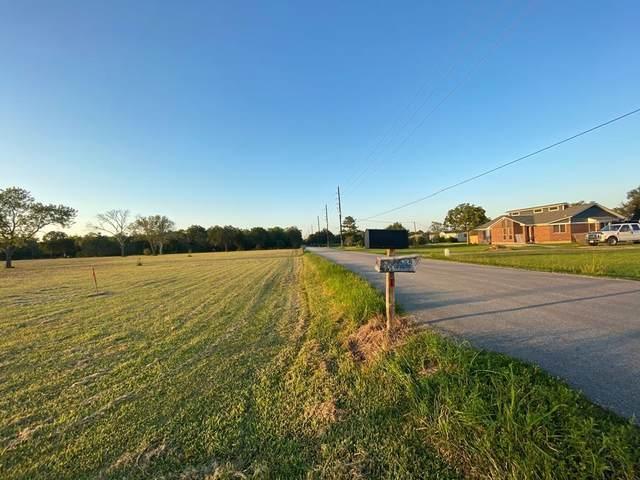 8302 County Road 79, Iowa Colony, TX 77583 (MLS #61612740) :: NewHomePrograms.com LLC