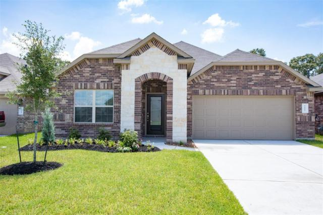 5227 Pointe Spring Crossing, Spring, TX 77389 (MLS #61616321) :: The Heyl Group at Keller Williams