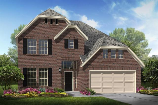 146 Brighton Woods Court, Conroe, TX 77318 (MLS #61636269) :: The Sansone Group