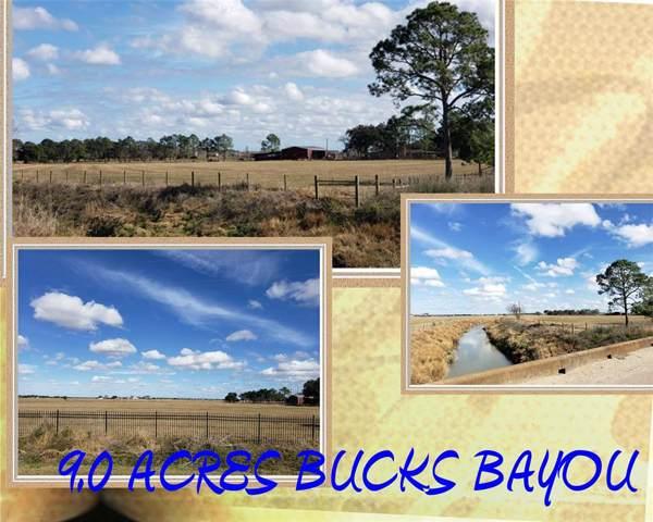0 County Road 166 Bucks Bayou Road, Bay City, TX 77414 (MLS #61687588) :: The SOLD by George Team