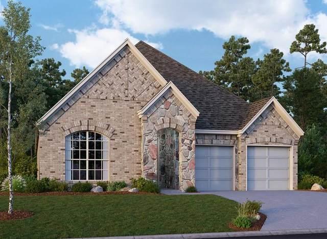 31315 Cardrona Peak Place, Hockley, TX 77447 (MLS #6173221) :: Caskey Realty