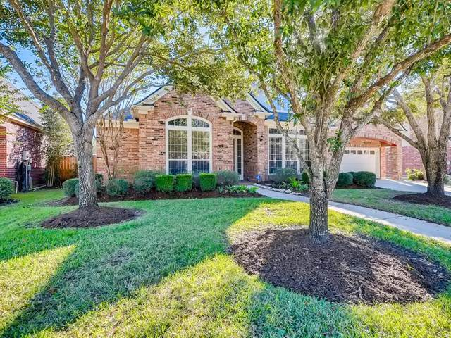 28023 Buckthorn Drive, Katy, TX 77494 (MLS #61767230) :: Homemax Properties