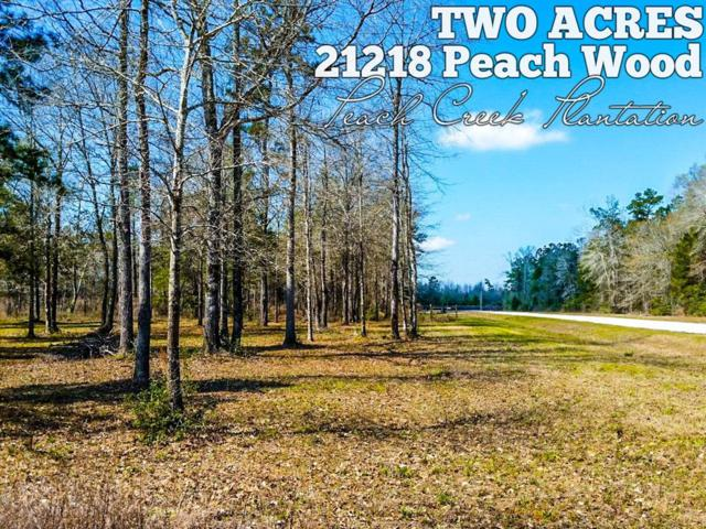 21218 Peach Wood, Cleveland, TX 77328 (MLS #61804196) :: KJ Realty Group