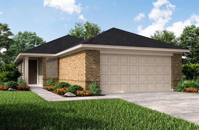 21451 Bluebonnet Cove Court, Katy, TX 77449 (MLS #61818771) :: The Parodi Team at Realty Associates