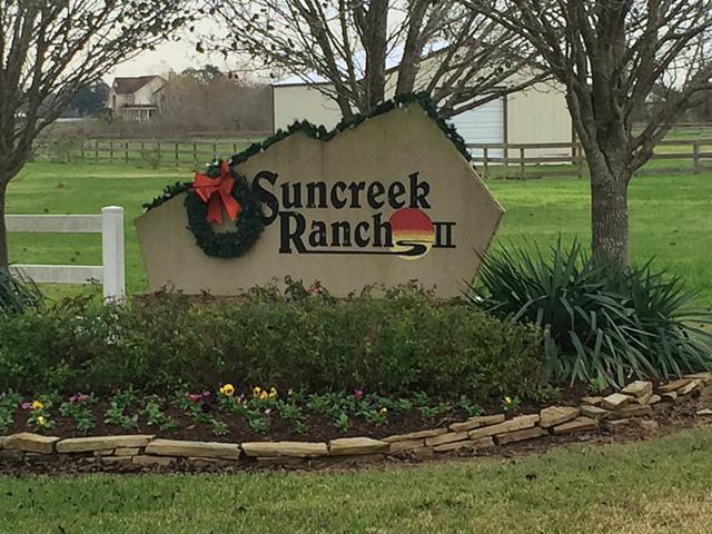 4418 Tankersley Circle, Rosharon, TX 77583 (MLS #61923070) :: Texas Home Shop Realty