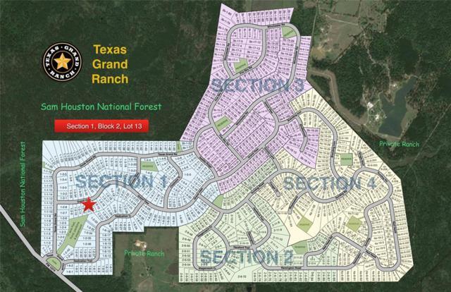 1-2-13 Grand View, Huntsville, TX 77340 (MLS #61931792) :: The Heyl Group at Keller Williams