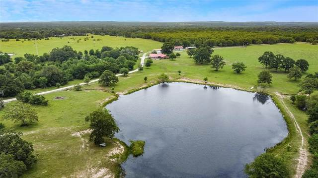 3502 County Road 159, Bedias, TX 77831 (MLS #6197712) :: The SOLD by George Team
