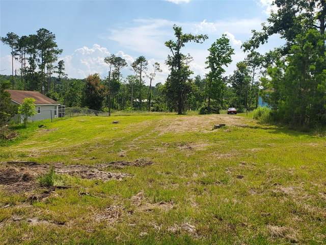 291 Mulberry Cove, Onalaska, TX 77360 (MLS #61979182) :: Lerner Realty Solutions